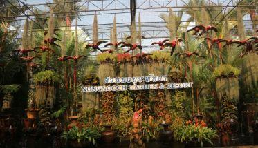 nong nooch garden 09