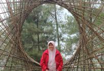 omah kayu34PNG