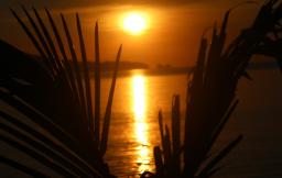 sunset peucang1