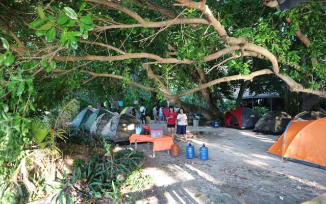tenda kotok