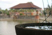 lombok 42